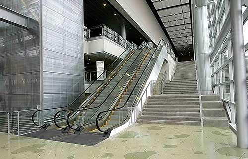 escalator Algéri